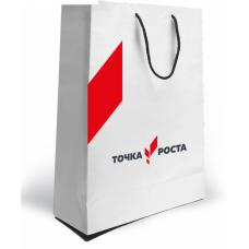 Пакет бумажный с логотипом Точка Роста