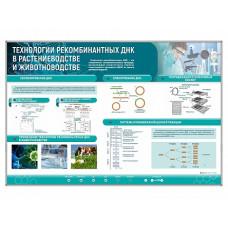 """Сборный электрифицированный стенд """"Технологии рекомбинантных ДНК в растениеводстве и животноводстве"""""""