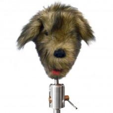 Тренажер для отработки стоматологических навыков у собак