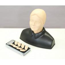 Тренажер для отработки навыков исследования уха
