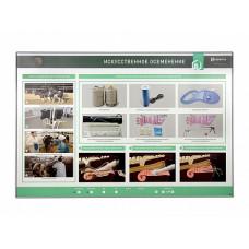 Интерактивный светодинамический стенд «Искусственное осеменение»