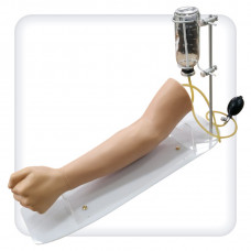 Тренажер руки для отработки навыков внутривенных процедур (взрослого человека)