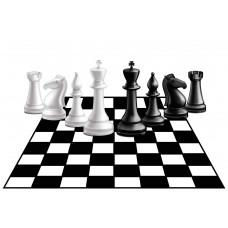 """Стикер для шахматной зоны """"Точка роста""""-2"""