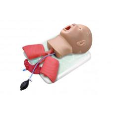 Фантом головы ребенка (возраст до 1 года) для интубации трахеи