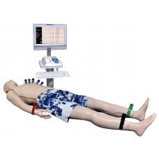 Имитатор для обследования кардиологического пациента