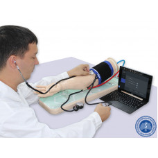 Рука для измерения артериального давления