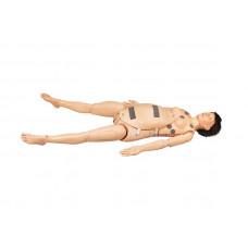 Манекен-симулятор родов (полноростовый) для отработки обследования плода и родового пособия